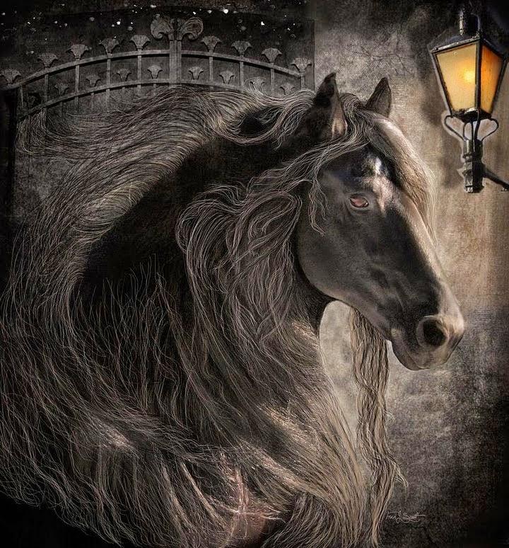 caballos-negros-fotos-artisticas