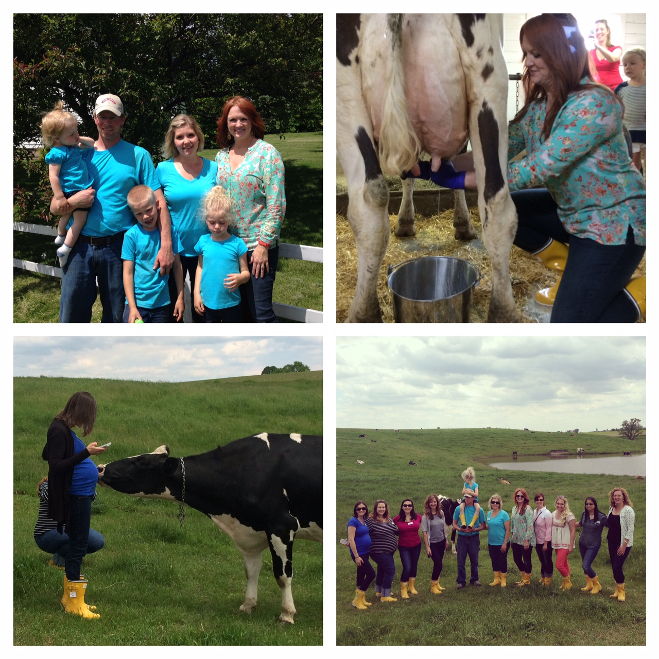 snapshots from farm tour