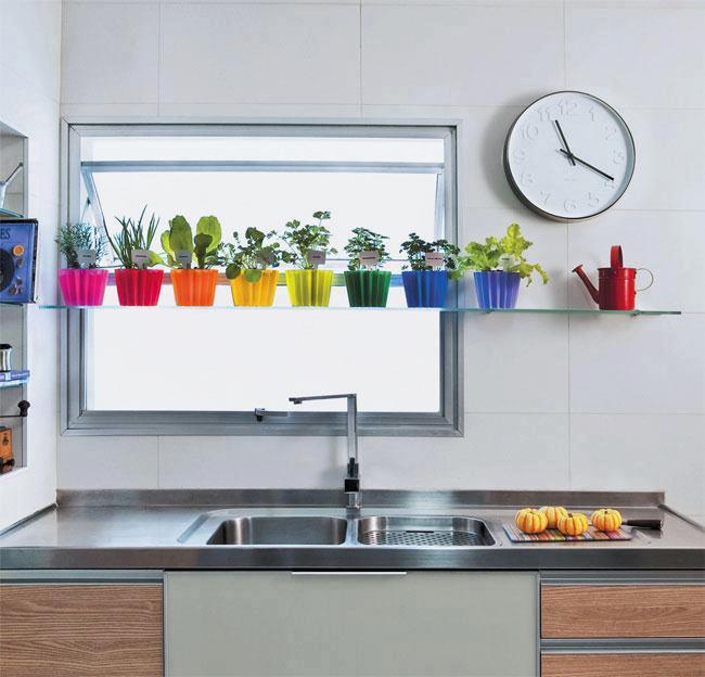 ideia outra possibilidade para a horta na pia  vasos diferentes