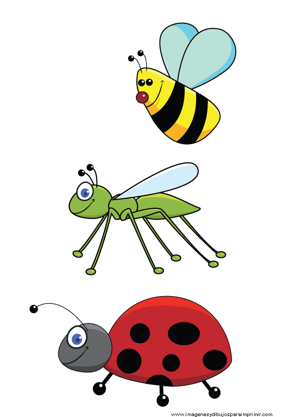 Insectos infantiles para imprimir gratis imagenes y dibujos para imprimir - Fotos de insectos para imprimir ...