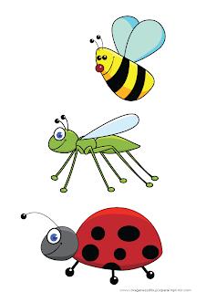 Insectos infantiles para imprimir