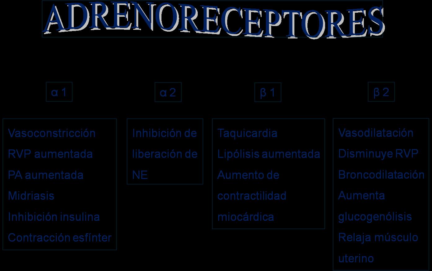 farmacos antiinflamatorios esteroideos aines