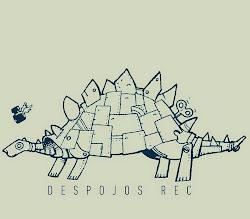 DESPOJOS DEL REC