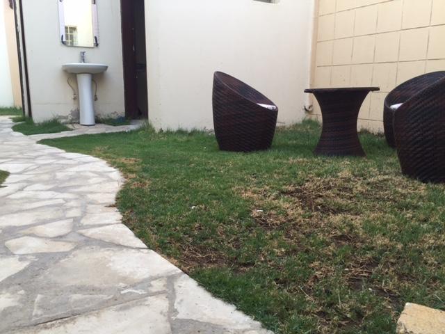 حديقة الشاليه