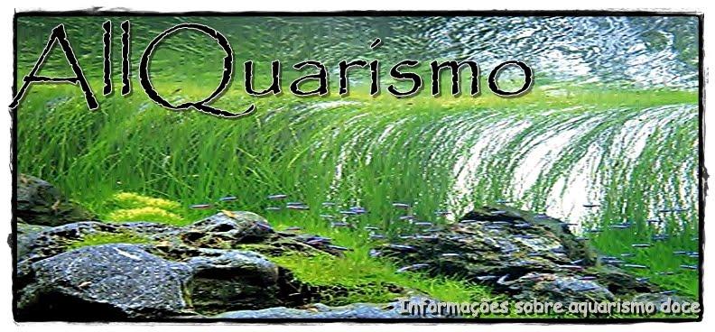 AllQuarismo