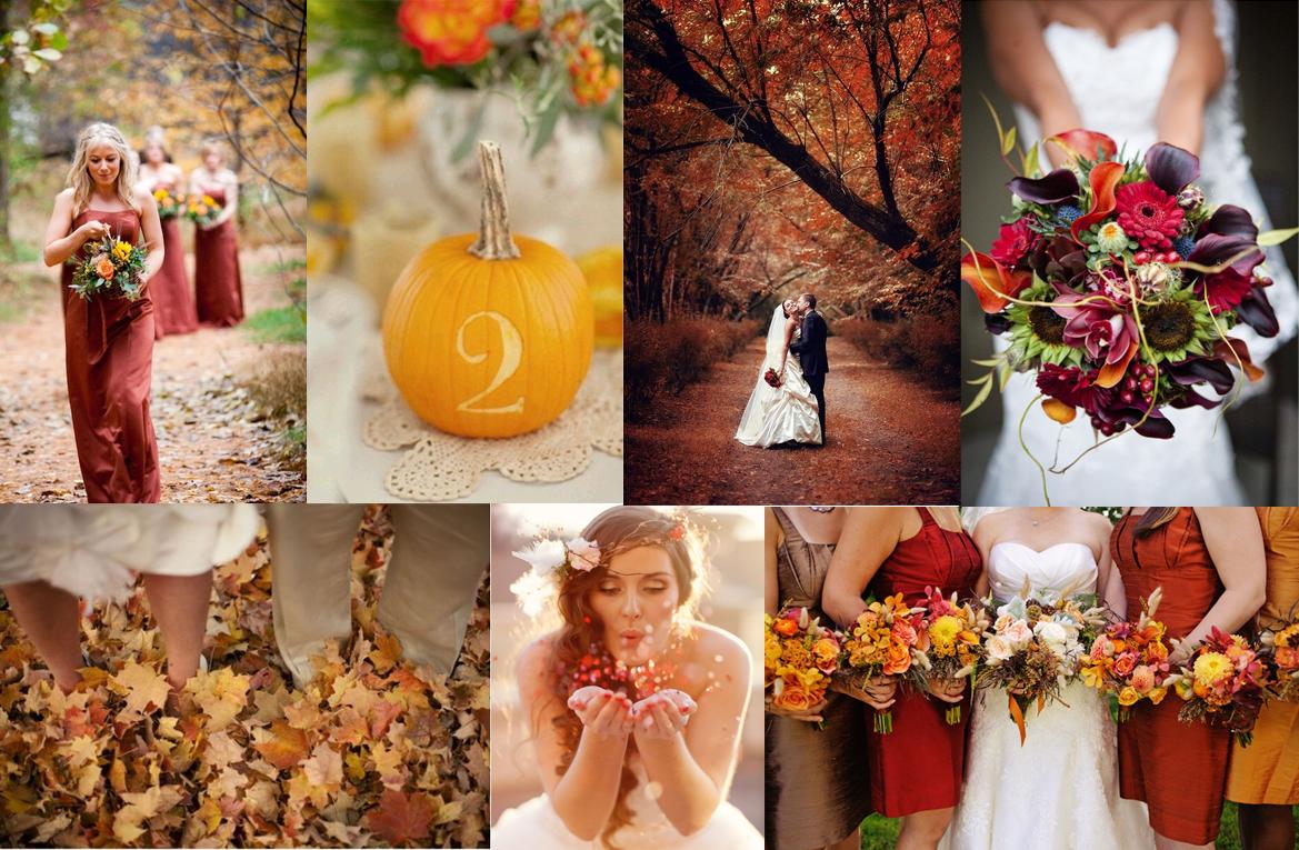 http://www.ilblogdisposamioggi.com/2014/11/matrimonioottobrenovembre.html