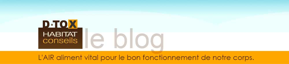 dtox-habitat-conseils.ch