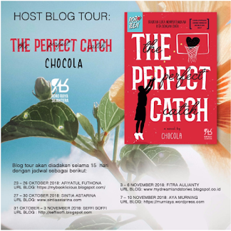 BLOG TOUR THE PERFECT CATCH