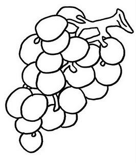 risco de uva desenho de uva para colorir desenhos para colorir