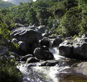A river flowing on Mulanje Mountian