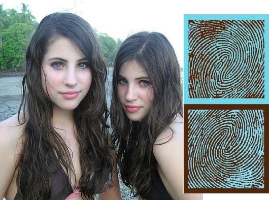 Tienen los gemelos idénticos los huellas dactilares iguales