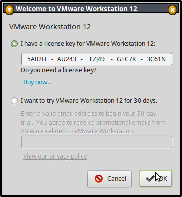 vmware workstation 10 with serial key