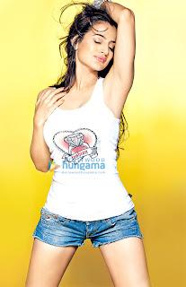Amisha Patel Stunning Hot New Bikini & Wet Boobs Photos