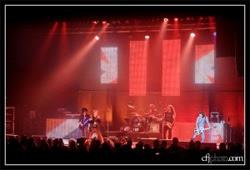 Conciertos de Billy Idol en Madrid, Bilbao, Oporto y Faro en julio