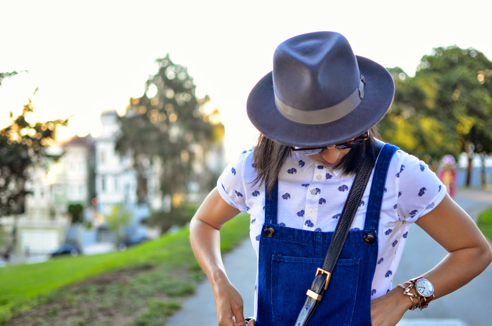 how to wear skirt overalls, zara skirt overalls, Fabros cross body bag, Goorin Bros.grey fedora, Goorin Bros. Doctor hat, elephant print polo, SF, Alamo square park