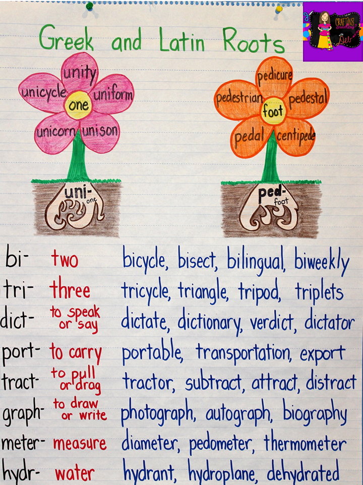 Crafting Connections: Greek and Latin Roots Anchor Charts