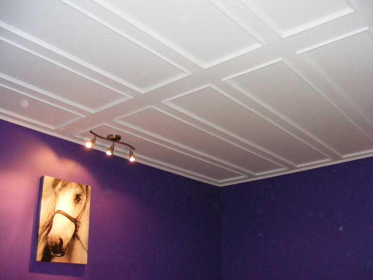 768 x for Plafond a caisson suspendu