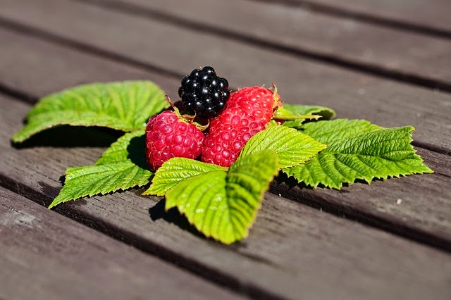 Mûres et Framboises aliments anti vieillissement