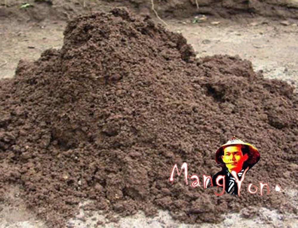 Tanah liat atau tanah merah untuk pembuatan batu bata