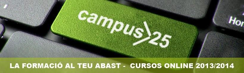 Campus 25 Centro de formacion de adultos