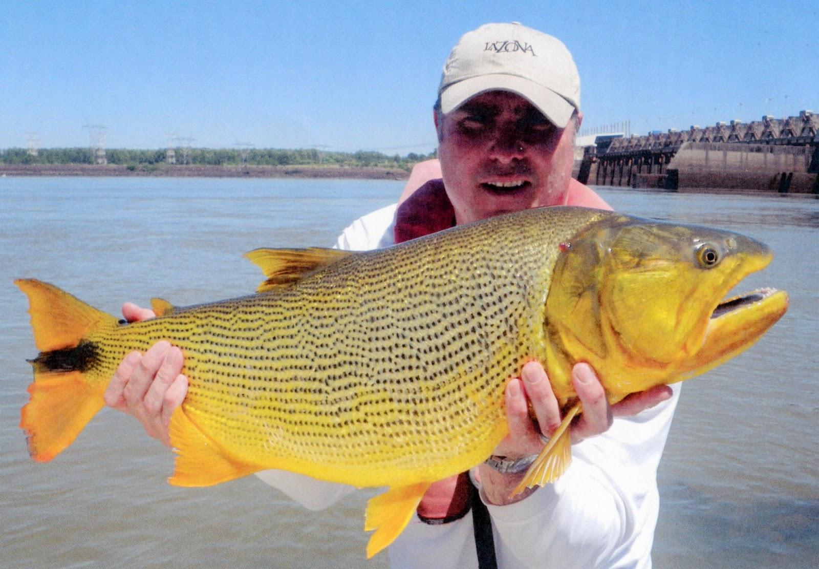 Record Dorado International Fishing ...