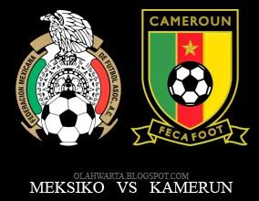 Hasil Piala Dunia 2014 Meksiko vs Kamerun