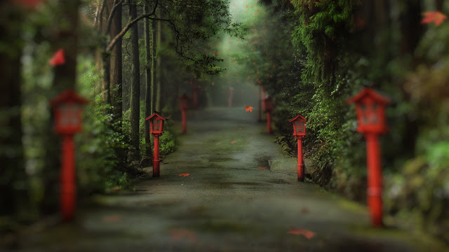 The Gentle Path to the Beyond / tilt-shift photography