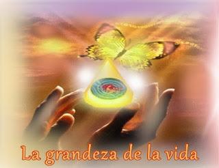 Querido, cada persona en la Tierra, tiene mucho que agradecer por la grandeza presente en sus vidas.