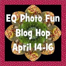 Photo blog hop