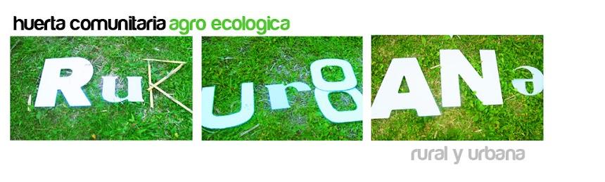 HUERTA COMUNITARIA RURURBANA - Villa Bosch