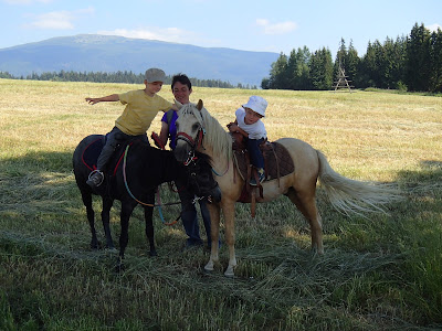 Orawa, Lipnica Wielka, Babia Góra, konie, kuce, jazda konna, bacówka, oscypki, bundz, żętyca