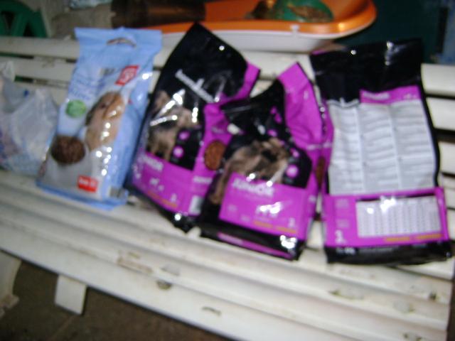 Protectora d 39 animals lydia argil s agradecidos por for Banco 0081