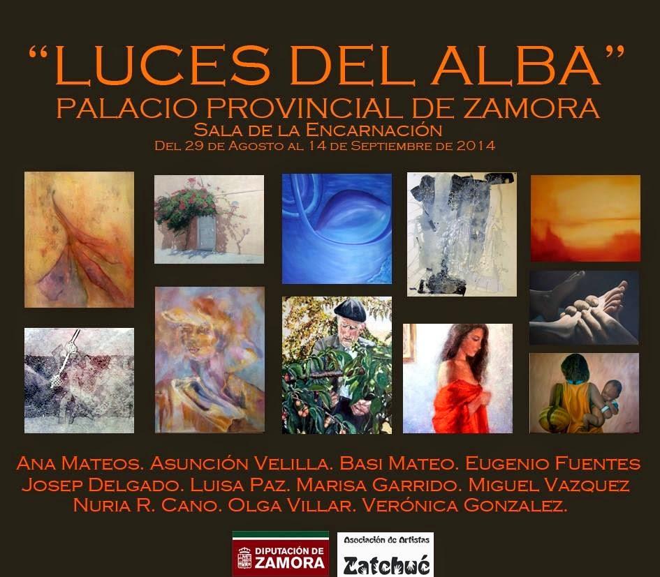 PALACIO PROVINCIAL DE ZAMORA (agosto - septiembre 2014)
