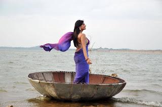 nikitha_narayana_hot_saree_stills_photos_012.jpg