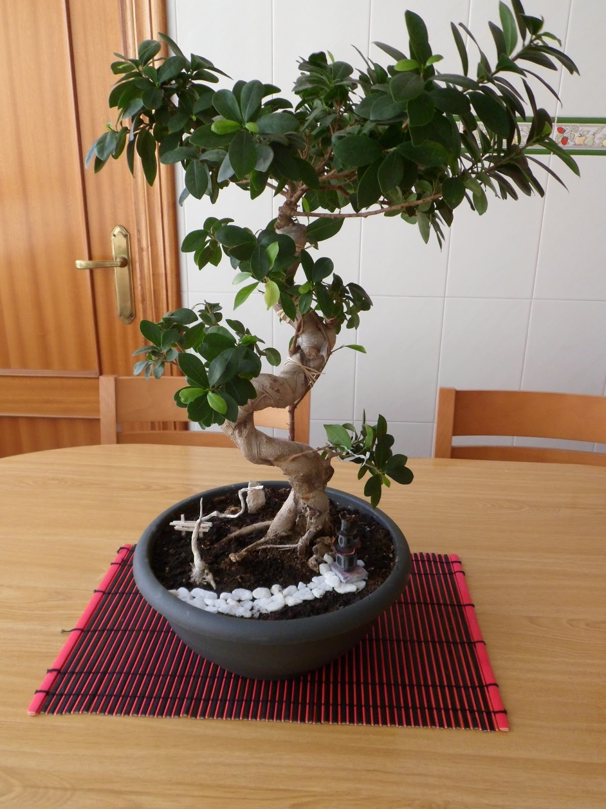 el brezal marchito decoraci n de bonsai