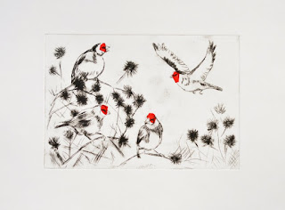 A charm of goldfinched drypoint and chine colle print