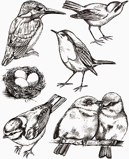 http://www.artjourney.nl/a-40045984/art-journey-stamps/garden-birds/