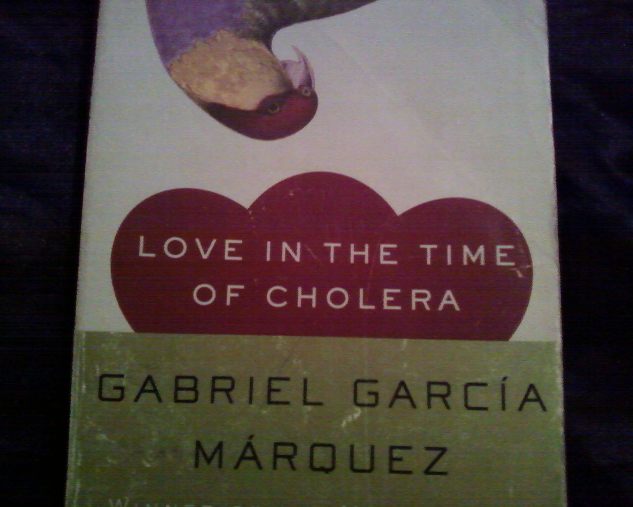 """love in time of cholera """"love in the time of cholera"""" is faithful to the outline of the novel but emotionally and spiritually anemic."""