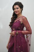 Hamsa Nandini at Bengal tiger audio-thumbnail-7
