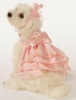 Bridesmaid Dresses For Dogs