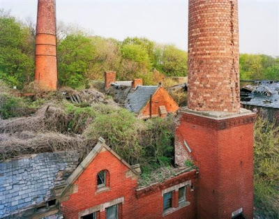 Η φύση «καταπίνει» εγκαταλελειμμένο νησί - σανατόριο έξω απ' τη Νέα Υόρκη