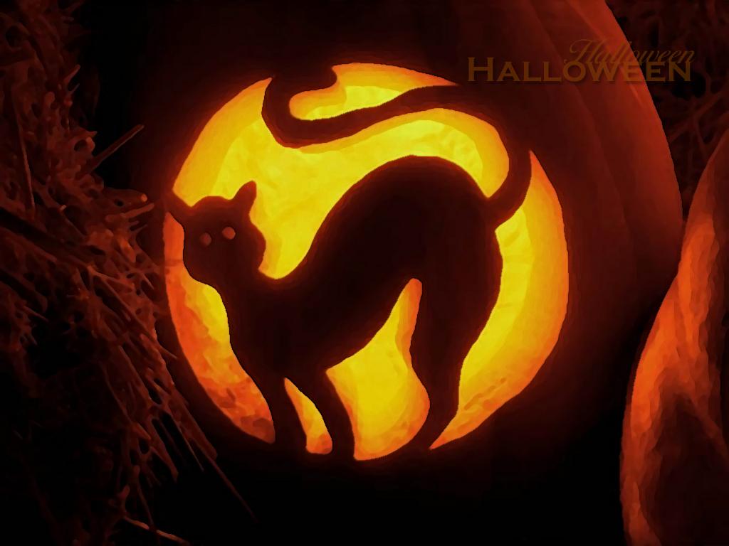 http://4.bp.blogspot.com/-PoJvREVrGlM/UA_kq-p91EI/AAAAAAAAAFU/v9wgHFP3tro/s1600/cat+haloween+wall.jpg