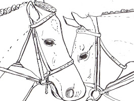 Adult Coloring Pages Horses Free Printables