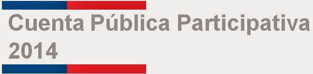 Cuenta Pública Participativa 2014