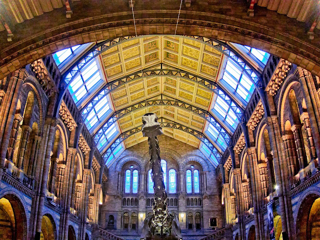 Dippy in the Central Hall at Natural History Museum Dinosnores for Grown-Ups