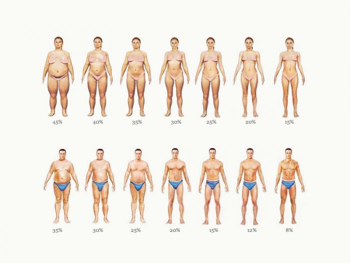 Подсушить тело в домашних условиях женщине 278