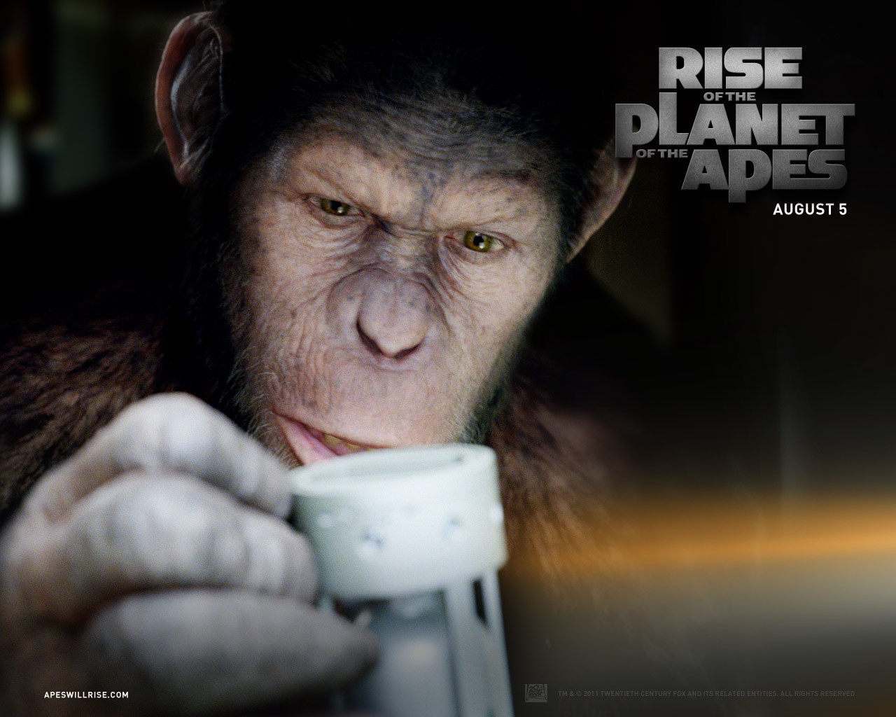 http://4.bp.blogspot.com/-Pp90F6-phNs/TwaYrFaRr-I/AAAAAAAADn8/6yVmtKwIK0k/s1600/Rise-of-the-Planet-of-the-Apes-Wallpaper-06.jpg