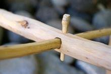 Detail Holzverbindung