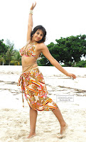 Sanjana sizzling in beach,siziling girls, sanajana hot, sanjana bikini pics, sanjana hot wallpaper, sanjana hot wallpapers, sanjana south actress,