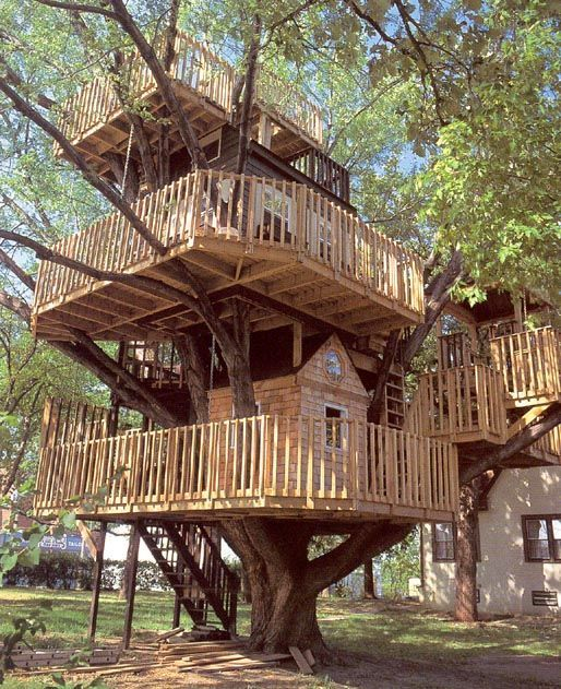 Backyard Treehouse Builders : Pocket of Perfection Amazing Tree Houses